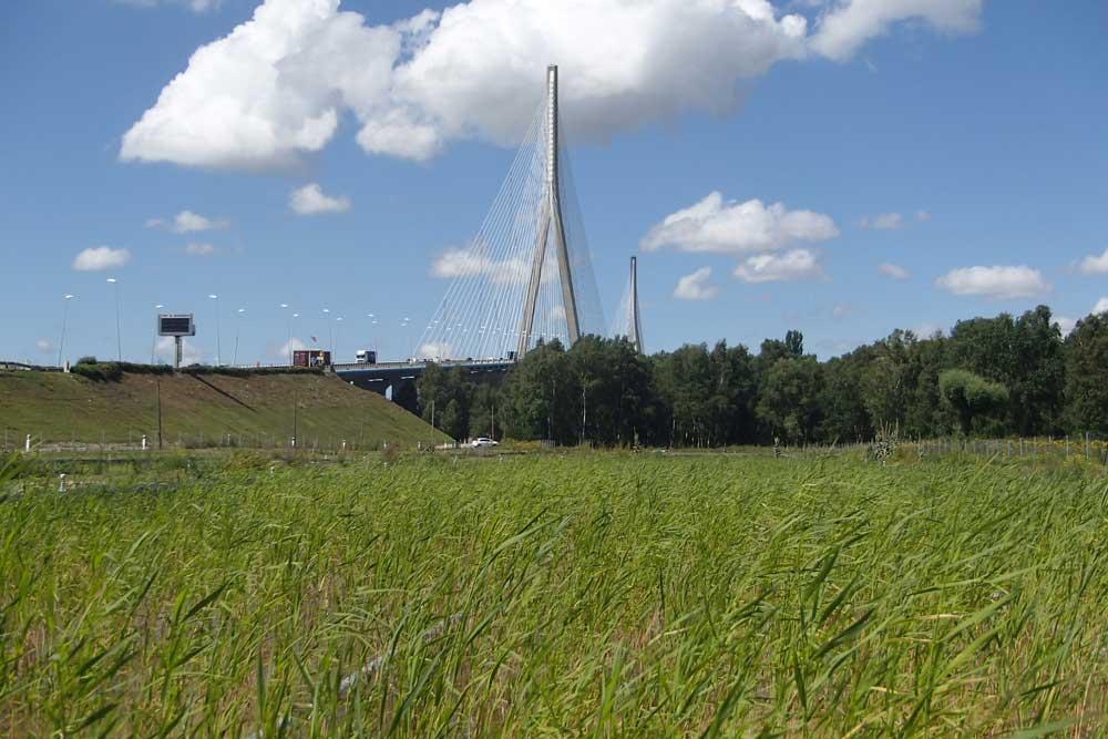 Pont de Normandie (14)