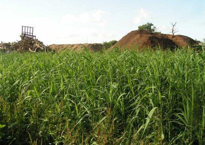 Bio-Bessin-Energie-14-traitement-de-lixiviats-ifb-environnement-4